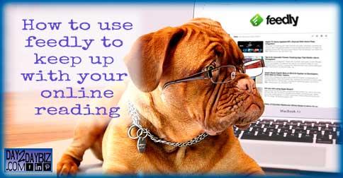 reading-dog-pixabay